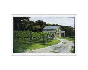 Vineyard in Cape May